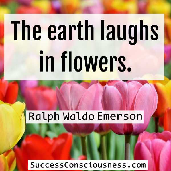 he earth laughs in flowers